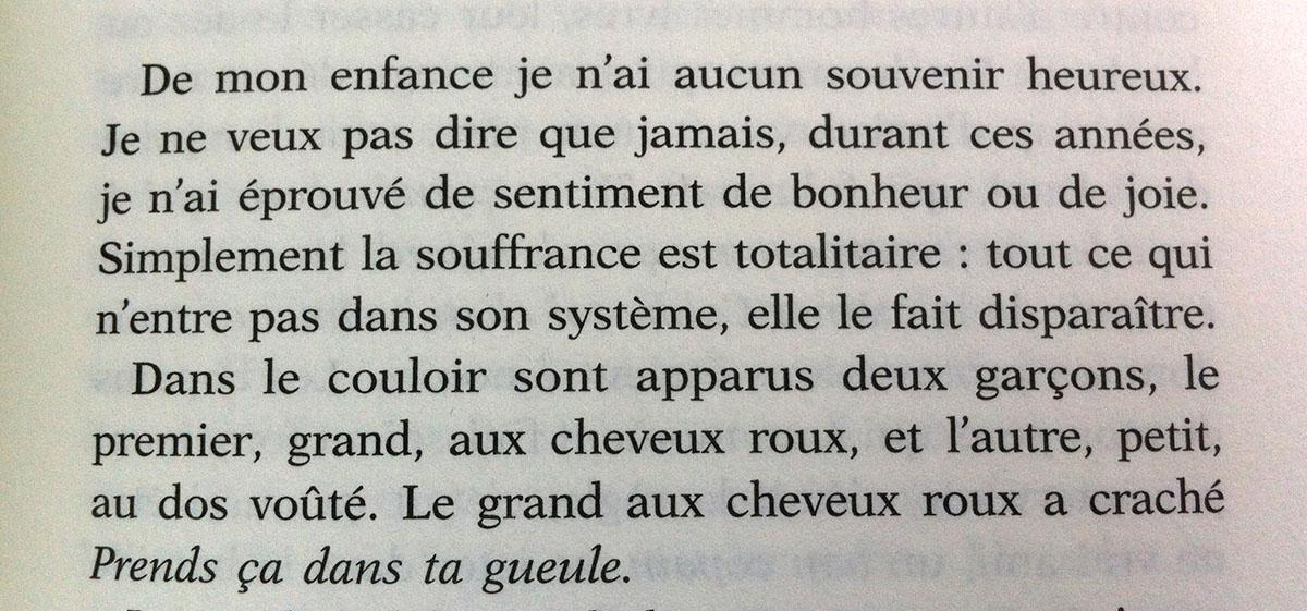 En finir avec Eddy Bellegueule de Edouard Louis