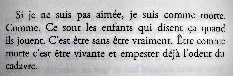 Je vous écris dans le noir de Jean-Luc Seigle